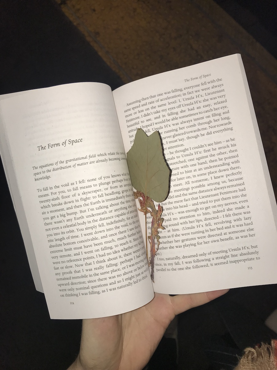 I am holding a paperback book open to a story titled 'The Form of Space'. Some leaves act as a bookmark.