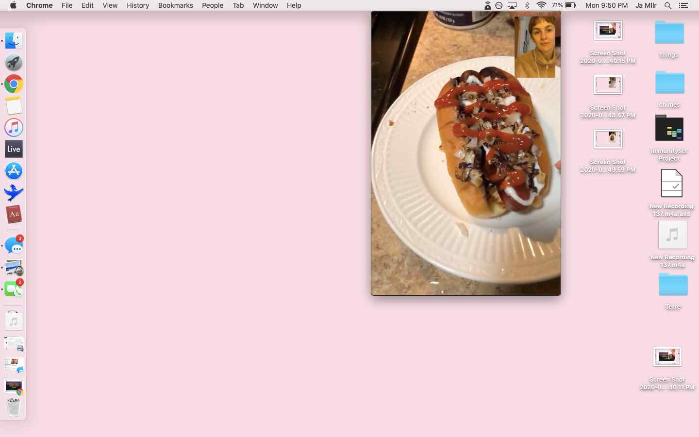Mac screenshot of FaceTime conversation with A, on A's side the screen shows her dinner hotdog