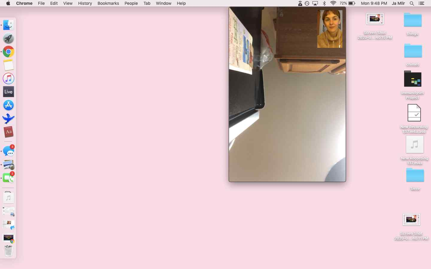 Mac screenshot of FaceTime conversation with A, on A's side the screen shows her kitchen ceiling